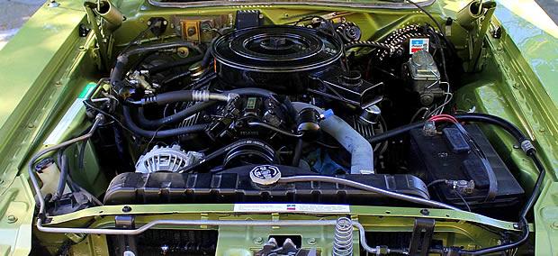 1973 Dodge 318 cubic inch V8